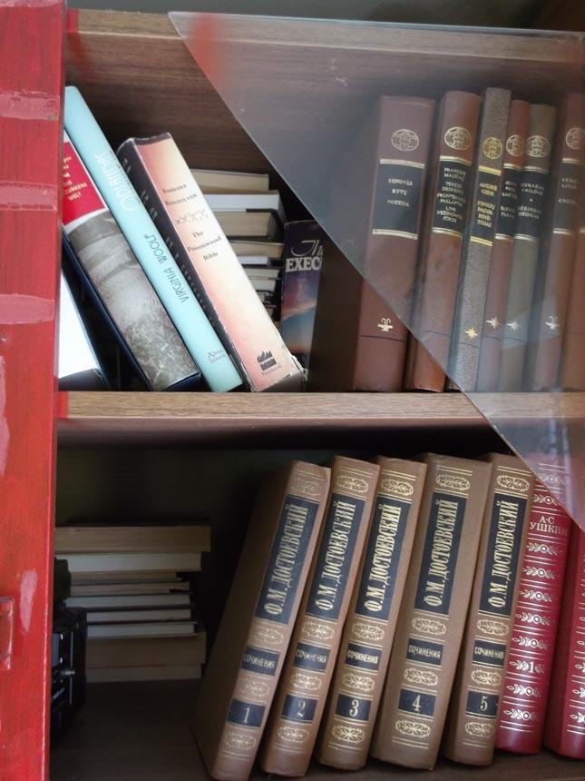 Astridos Petraitytė knygų lentyna