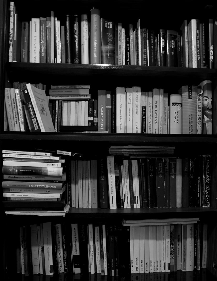 Studentės Aldonos Eikevičiūtės knygų lentynos