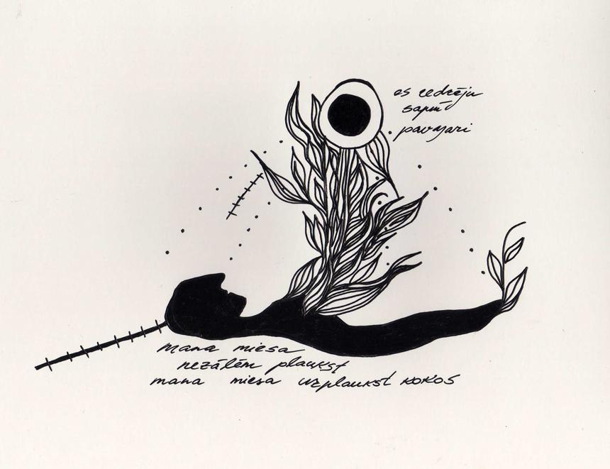 Indros  Brūverės-Darulienės iliustracijos
