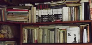 Ritos Nomicaitės knygų lentynos