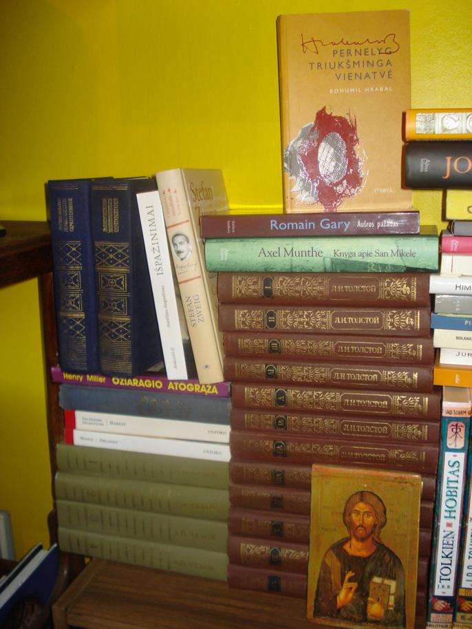 Jūratės Visockaitės knygų lentyna