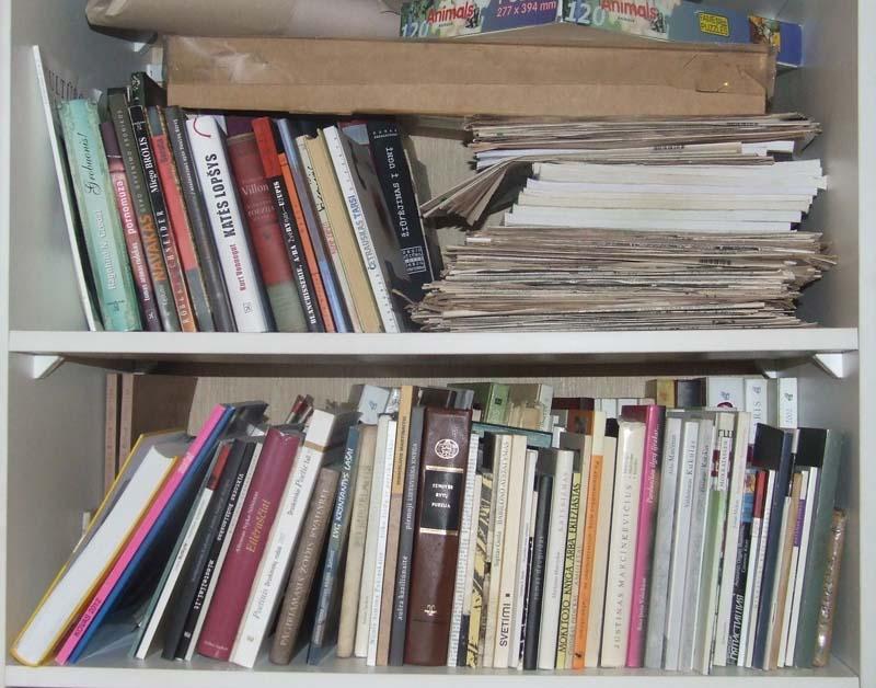 Gyčio Norvilo knygų lentynos