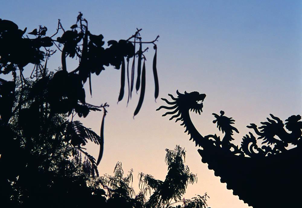 Paulius Normantas. Vietnamo šventyklos stogas saulei nusileidus. Lumbinis, Nepalas. 2008