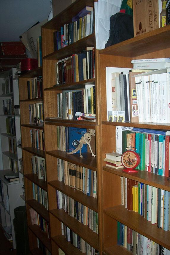 Poeto Lauryno Katkaus knygų lentynos