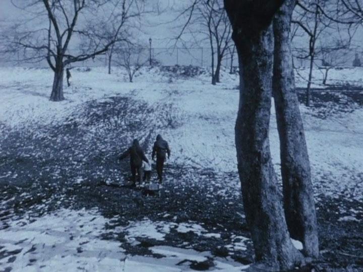 """Jono Meko filmo """"Walden (Diaries, Notes, and Sketches)"""" kadras"""
