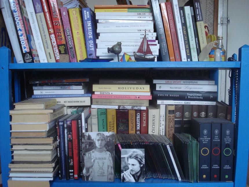 Emilijos Visockaitės knygų lentyna