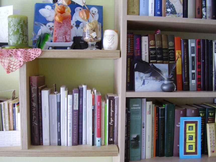 Poeto Vainiaus Bako knygų lentyna