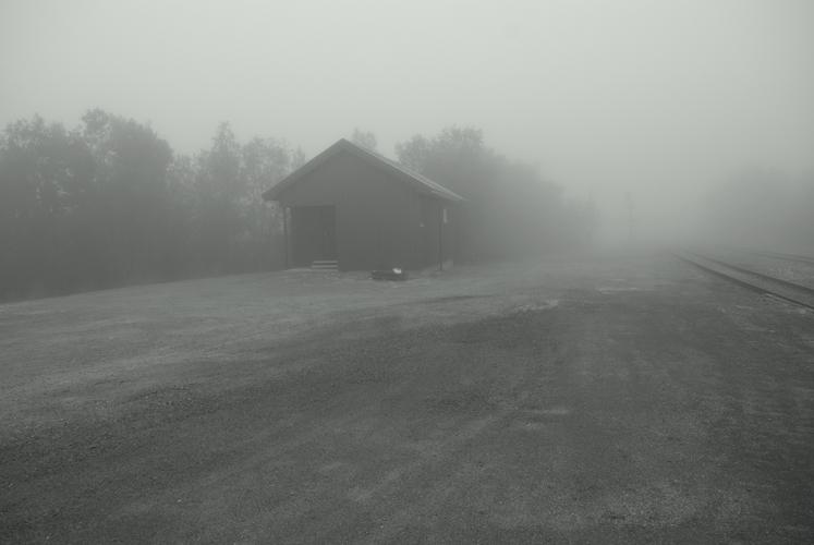 "Brigita Kazlauskaitė. Iš ciklo ""Norden fog"" (2011)"