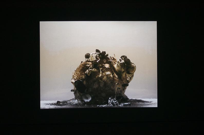 """Darius Žiūra. Iš ciklo """"Uždrausti vaisiai"""", 2010–"""