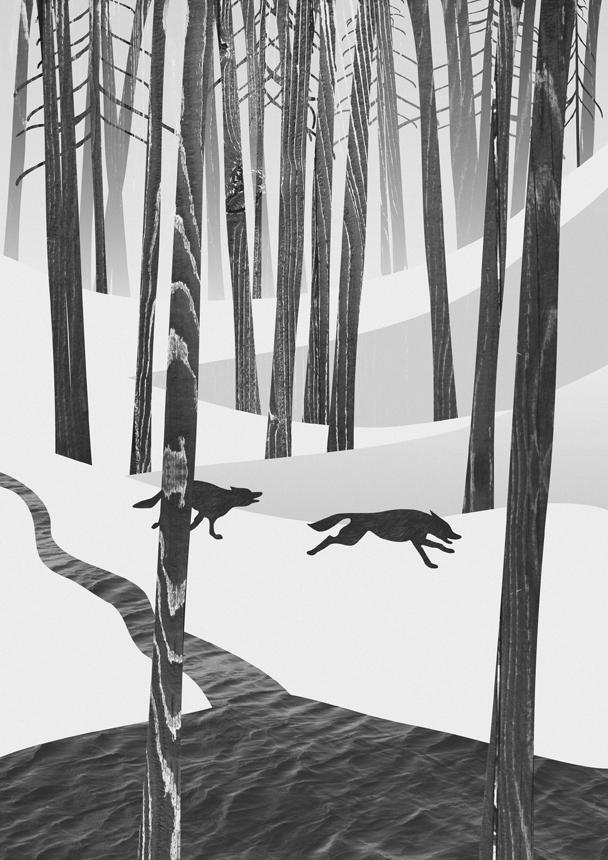 """Martynas Pavilonis. """"Martwoodo vilkai"""", mišri technika, 2012"""