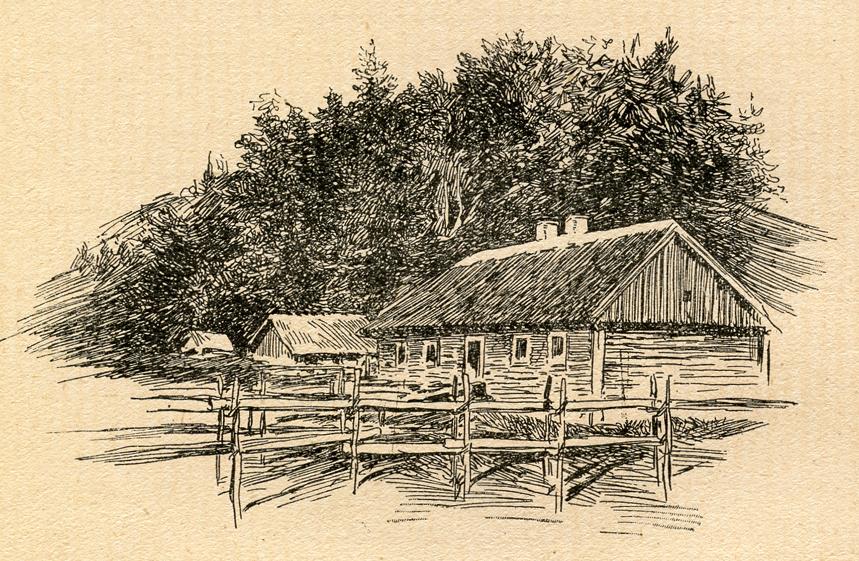 Miškas už Petro ir Zofijos Kriaučiūnų namų, kuriame 1895 m. buvo slepiami V. Kudirkos rankraščiai ir knygos. Dail. E. Loevy. 1909 m.