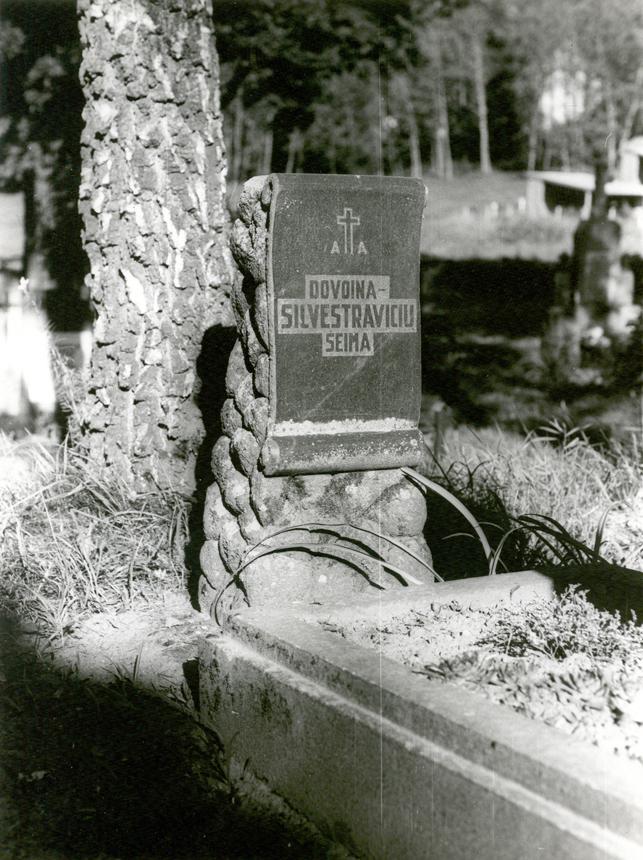 Dovoinų-Silvestravičių giminės kapavietė Kalnųjų kapinėse. Čia palaidoti Mečislovo Dovoinos-Silvestravičiaus tėvai, brolis Juozapas Povilas ir seserys Vladislava Marija ir Elvyra. Prano Lazdausko nuotrauka (1999)