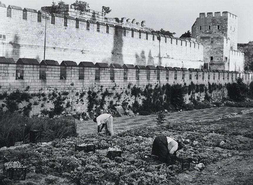 Stambulo sodininkai. Konstantinopolio gynybinės sienos (IV-Va.) fragmentas, 2015