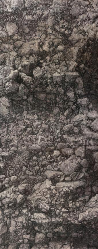 Petras Lincevičius. Be pavadinimo, drobė, aliejus, 200 x 80, 2016.