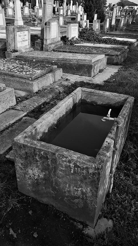 Sibiu kapinės, 2016. Autorės nuotrauka