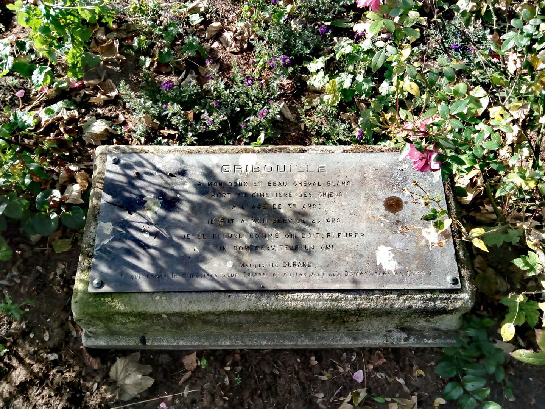 Kapinių įkūrėjos Margaritos Durand arklio kapas