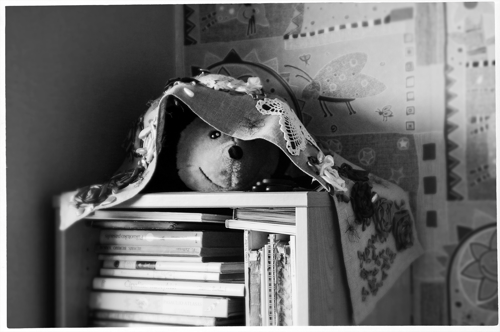 Namų biblioteka. manipuliacija.lt nuotrauka