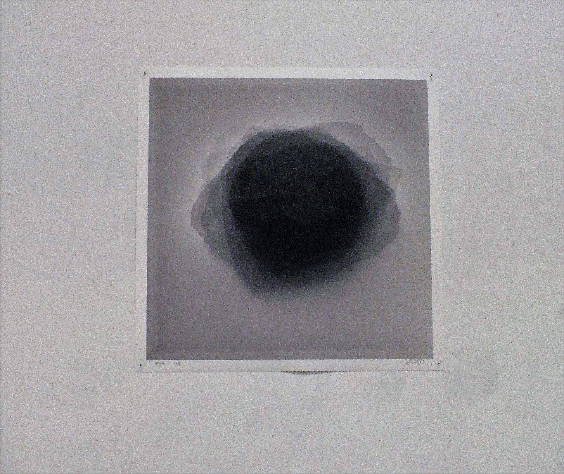 """Dovilė Dagienė.  """"Viltis # 1: meteoritai, kurių  autentiškumas nebuvo patvirtintas"""".  Iš parodos """"Mokslas ir gyvenimas""""  (VDA """"Titanikas"""").  gyčio norvilo nuotrauka"""